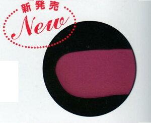 チョコレート用 色粉  紫(バイオレット)色 200g 業務用 フランスPCB社