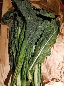 イタリア産 カーボロ・ネロ(黒キャベツ)約500g 2500円/500g 量り売り商品