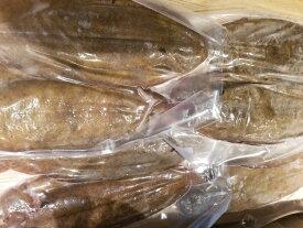 冷凍 フランス産ドーバーソール ホール8尾入り 1パック2枚入り×4パック 1枚約300〜400g 約2.5kg 舌平目