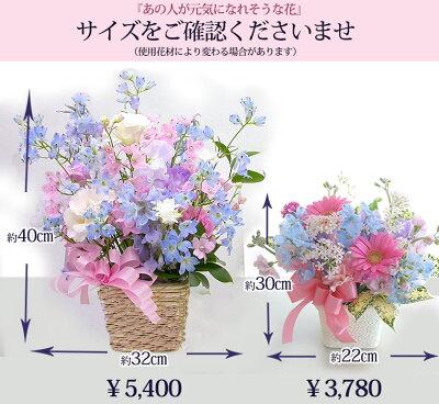 ペットお供え花