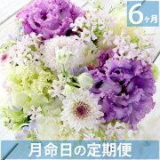 月命日のお花、お供えのお花