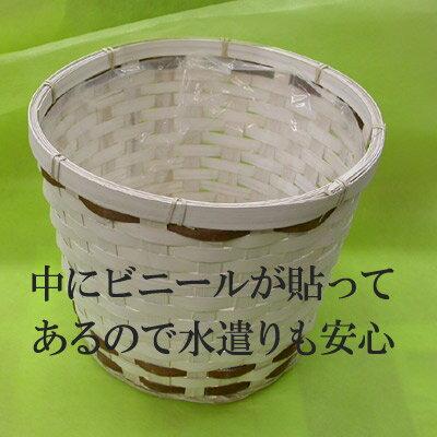 [花材]白鉢カバー6号鉢用【半額以下】[訳]