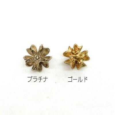[花材・ナチュラル]マイクロバクリ10個セット