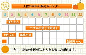 澤村さんの柑橘類販売カレンダー