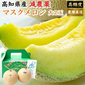 高知県産 贈答用 高級マスクメロン 土佐の楽園 大玉(約1,5kg×2) お取り寄せ 母の日 高級 ギフト フルーツ 果物 送料無料