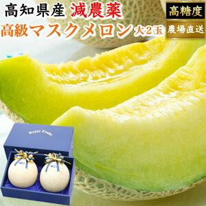 母の日 ギフト 贈答用 高級ギフト箱 厳選マスクメロン 土佐の楽園 大玉(約1,5kg×2) お取り寄せ 最高級 フルーツ 果物 送料無料