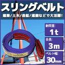 スリングベルト 3m 幅35mm 使用荷重1t ベルトスリング 繊維ベルト 吊りベルト クレーンベルト 帯ベルト 吊り上げ ナイ…