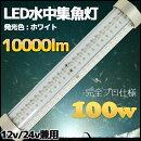 【プロ仕様】白色LED水中集魚灯100w10000lmホワイト12v/24v兼用LED集魚灯船舶ライト船舶釣り