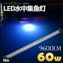 LED 水中ライト 集魚灯 LED水中集魚ライト 12V用 60w ホワイト イカ アジ タチウオ イワシ 仕掛け 夜焚き 9600lm 白 …