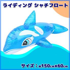 ライディングシャチフロート シャチ型浮き輪 プール 海 ビーチ 子供 大人 プレゼント レジャー アウトドア 夏 150cm 浮輪 うきわ シャチ 取っ手付き