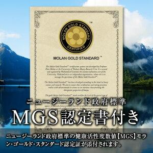 MGS5+/MG100+