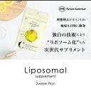 リポソームビタミンC ハードカプセル ビタミンC 国内製造 Liposomal 42粒 100% (HCP内)