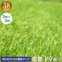 【コミコミ価格9790円】 【送料無料】人工芝 リアル人工芝 幅2m×長さ5m 芝丈38mm 密度1.9倍 ロール 庭 ガーデニング …
