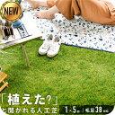 ◆1/26まで 4780円◆ 【送料無料】人工芝 リアル人工芝 幅1m×長さ5m 芝丈38mm 密度1.9倍 ロール 庭 ガーデニング ガ…