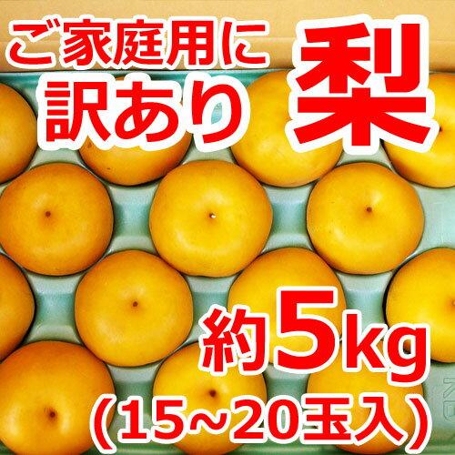 【訳あり】【送料無料】梨15〜20玉(約5kg)味は秀品同様、みずみずしくジューシーな梨!日本一大産地「茨城」より発送!ご家庭用にどうぞ。[幸水] [豊水] [あきづき] [新高] [にっこり][新興][秋峰]
