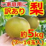 訳あり梨5kg-正方形