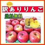 【送料無料】訳ありリンゴ10kg中玉〜大玉フジ/王林★予約販売開始★