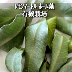 有機JAS認定 オーガニック&無農薬栽培♪レモンマートル ホールリーフ(4g)レモンの香りのハーブ♪オーストラリア産抗酸化作用♪リラックス♪スパイス♪ハーブティー♪ブッシュフード♪【メール便】