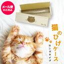 猫のひげケース(ロングタイプ)桐箱 名前シール付 ビーグラッド【メール便送料無料】ギフト ねこのひげ ひげ入れ 木箱 …