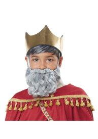 Wise Man Gray Beard and Mustache for 男の子s ハロウィン コスプレ 衣装 仮装 小道具 おもしろい イベント パーティ ハロウィーン 学芸会