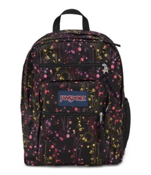 JANSPORT ジャンスポーツ バックパック リュックサック BIG STUDENT MULTI CLIMBING DITZY バッグ カバン