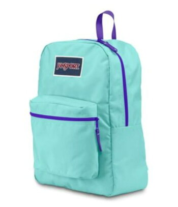 OVEREXPOSEDBACKPACKAQUADASH/VIOLETPURPLE/JANSPORT/バッグ/鞄/