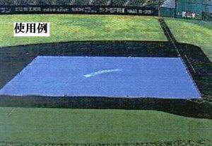 【配送条件有】【送料無料】輸入#3000 ブルーシート 15×20m 【ジャンボシート15m×20m】