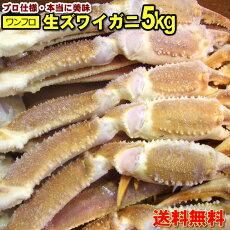 【送料無料】本当に美味しいズワイガニ5kg船凍冷凍生ずわい蟹です。5Lサイズ。約12肩(6尾分)ファミリー用。