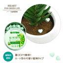 【錠剤肥料】 観葉植物 おしゃれ 観葉植物用 置くだけ簡単♪可愛いハート型肥料(ハイポネックス錠剤肥料