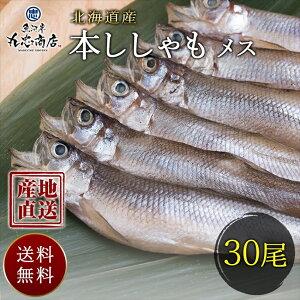 お歳暮 ギフト 北海道産 産地直送 本ししゃも メス 30尾 シシャモ 焼き魚 おつまみ お取り寄せ 食べ物 お取り寄せ グルメ 送料無料