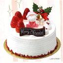 【セットでお得☆】【新商品】クリスマス5号セット【クリスマス用飾り】