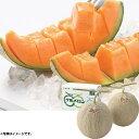 お中元 御中元 ギフト 果物 フルーツ北海道産夕張メロン良品2Lサイズ2玉(220_19夏)