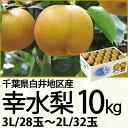 千葉県白井地区産幸水梨10kg3Lサイズ/28玉〜2Lサイズ/32玉(220_17梨)
