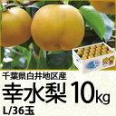 千葉県白井地区産幸水梨10kgLサイズ/36玉(220_17梨)