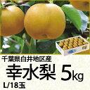 千葉県白井地区産幸水梨5kgLサイズ/18玉(220_17梨)