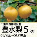 千葉県白井地区産豊水梨5kg6Lサイズ/9玉〜5Lサイズ/10玉(220_17梨)