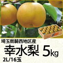埼玉県騎西地区産幸水梨5kg2Lサイズ/16玉(220_17梨)