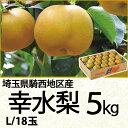 埼玉県騎西地区産幸水梨5kgLサイズ/18玉(220_17梨)