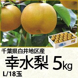 (銀行振込・コンビニ決済受付は終了しました)千葉県白井地区産幸水梨5kgL/18玉(220_20梨)