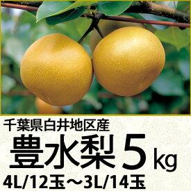千葉県白井地区産豊水梨5kg4L/12玉〜3L/14玉(220_20梨)