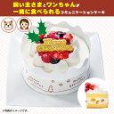 クリスマス ホットドッグコミフ豆乳クリームのXmasケーキ【310_X】