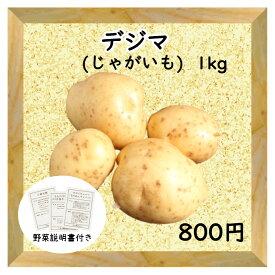 【三浦野菜】じゃがいも 馬鈴薯 デジマ 1kg 【送料半額】【東日本】