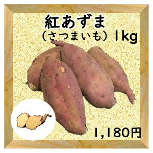 【三浦野菜】 サツマイモ(紅あずま)1kg 【送料半額】 【東日本】