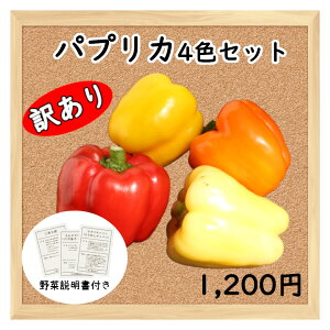 【三浦野菜】 【訳あり】 完熟パプリカ 四色セット 【送料半額】 【東日本】