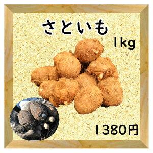 【三浦野菜】 さといも 1kg 【送料半額】 【東日本】