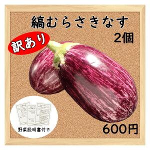 【三浦野菜】 【訳あり】 縞むらさき ナス 2個 【送料半額】 【東日本】 【夏野菜】