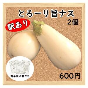 【三浦野菜】【訳あり】とろーり旨なす ナス 茄子 2個【送料半額】【東日本】【夏野菜】