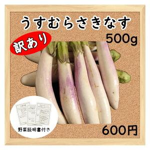 【三浦野菜】 【訳あり】 うすむらさき ナス 500g 【送料半額】 【東日本】