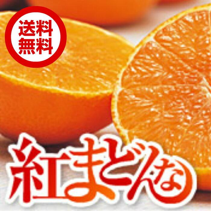 【送料無料】愛媛県産 紅まどんな サイズ L 2kg(約8〜10玉)【ご家庭用】【お取り寄せ】【紅マドンナ】