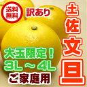 【送料無料】大玉限定土佐 文旦サイズ 3L〜4L約10kg【高知産】【訳あり品】【ご家庭用】【ぶんたん】